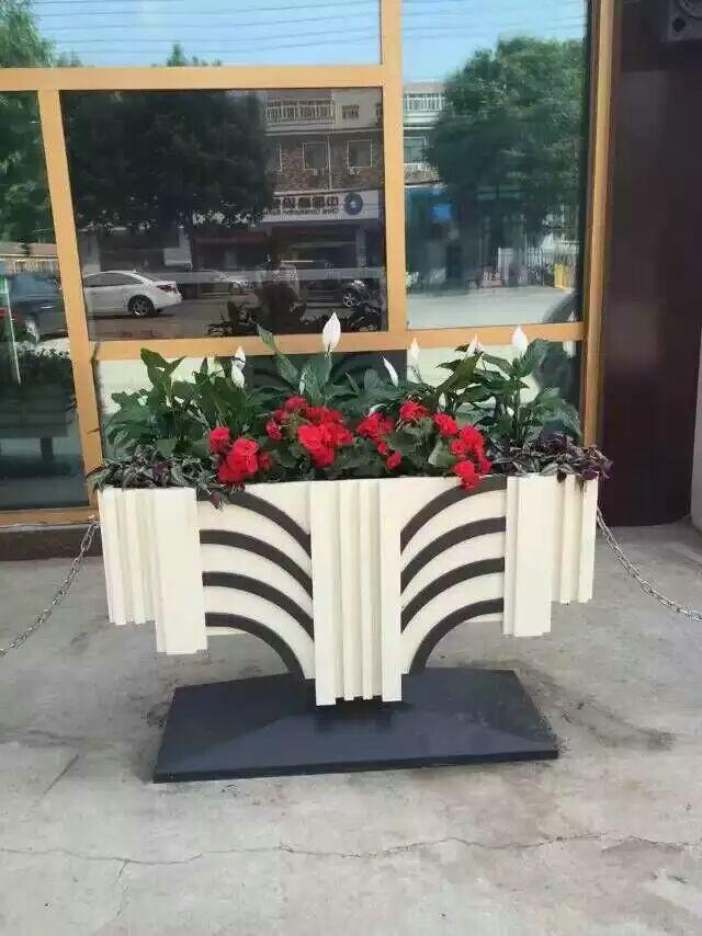 花箱栽培植物的种类